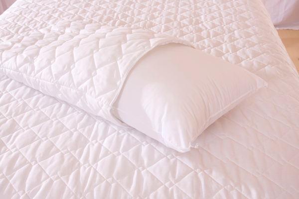 Sleep Therapedic | Product - Pillow Protectors : quilted pillow protector - Adamdwight.com